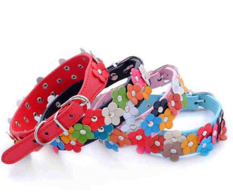 dog collar cat collar pet collar