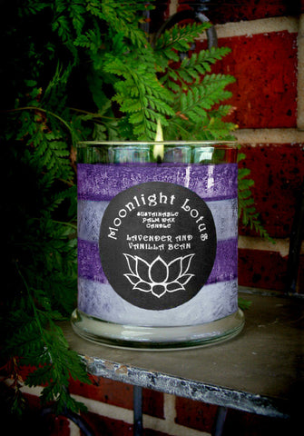 Lavender And Vanilla Bean Certified Sustainable Palm Wax Candle