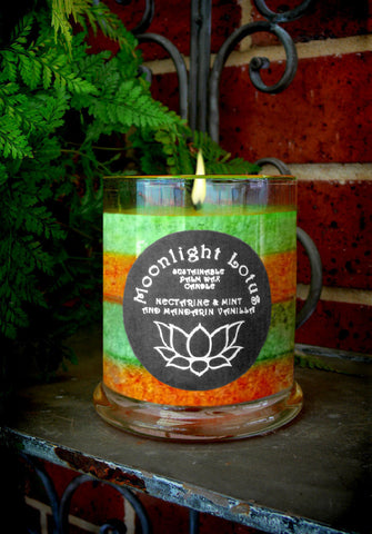 Nectarine Mint And Mandarin Vanilla Certified Sustainable Palm Wax Candle