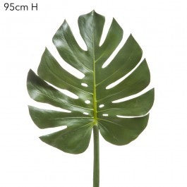 Monstera/Philo Leaf