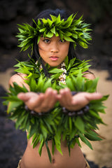 Hawaii Hula Pictures
