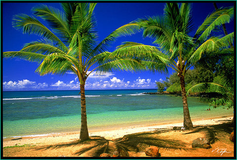 Tropical Lagoon with Palm Trees and Reef Anahola Beach Kauai-Hawaiipictures.com