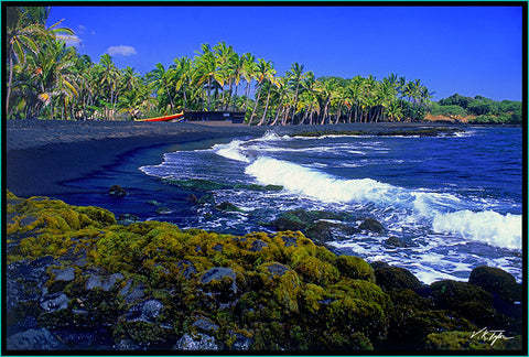 Punalu'u Black Sand Beach Big Island - Hawaiipictures.com