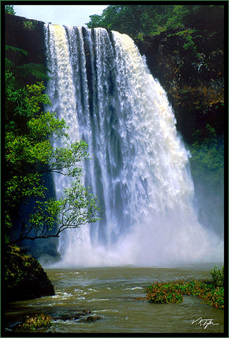 Wailua Falls after a heavy rain from the bottom Lihue Kauai-Hawaiipictures.com