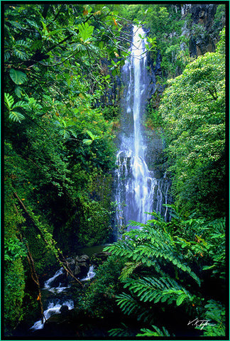 Vertical Wailua Falls with Foliage  Hana Maui-Hawaiipictures.com