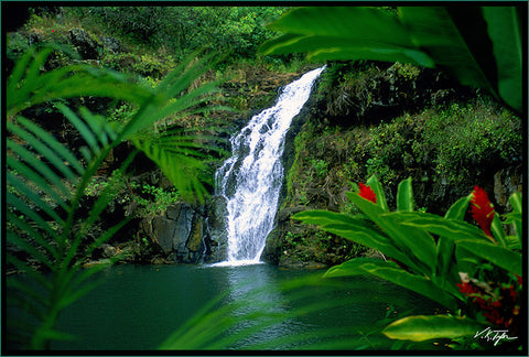 Waimea Waterfall Oahu - Hawaiipictures.com