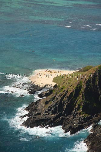 Hawaii, Oahu, Moku Nui Islet. Part of the State Bird Sanctuary.