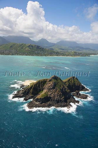 Hawaii, Oahu, Moku Nui Islet. Part of the State Bird Sanctuary. Picture