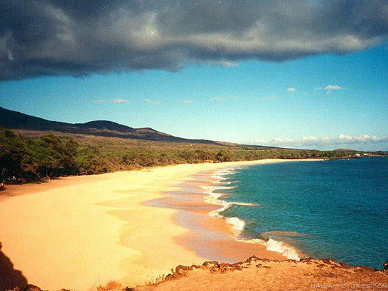 Makena Beach Picture