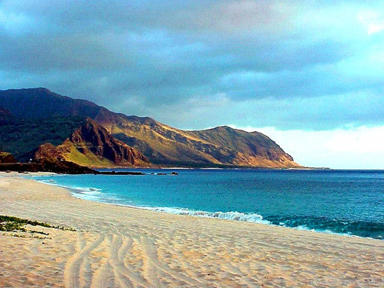 Barking Sands Beach Picture - Hawaiipictures.com