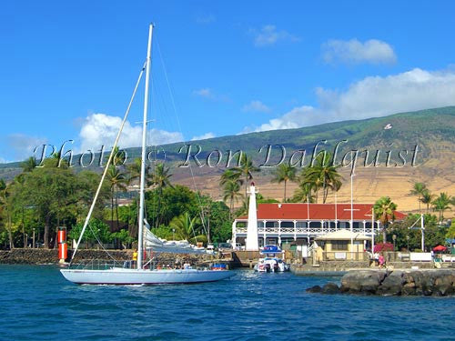 Sailboat, Pioneer Inn, Lahaina Harbor, Maui, Hawaii