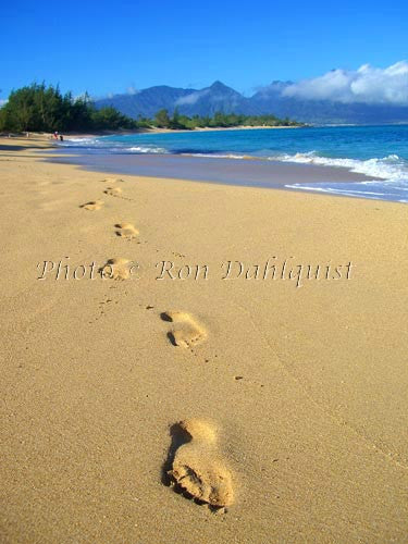 Footprints in the sand, Maui, Hawaii Picture