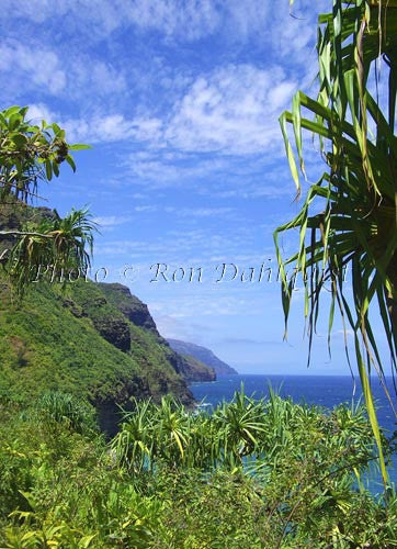 View of Na Pali coast and Hanakapiai beach area as viewed from Kalalau Trail. Kauai, Hawaii Photo - Hawaiipictures.com