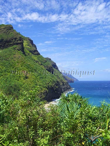 View of Na Pali coast and Hanakapiai beach area as viewed from Kalalau Trail. Kauai, Hawaii Picture