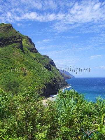 View of Na Pali coast and Hanakapiai beach area as viewed from Kalalau Trail. Kauai, Hawaii Picture - Hawaiipictures.com