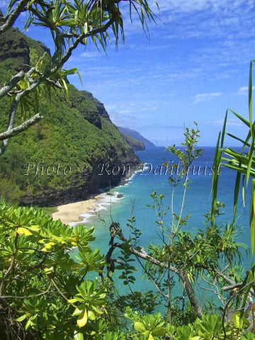 View of Na Pali coast and Hanakapiai beach area as viewed from Kalalau Trail. Kauai, Hawaii - Hawaiipictures.com