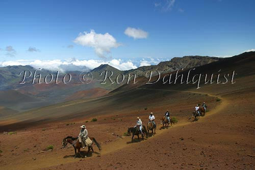 Horseback Tour into Haleakala Crater, Maui, Hawaii