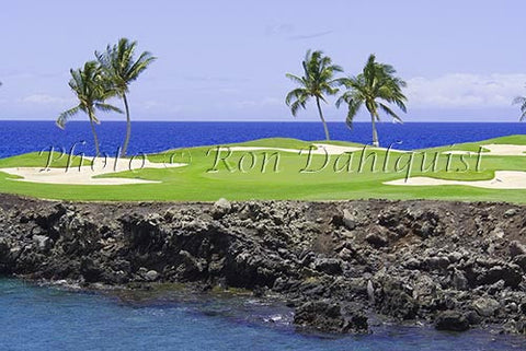 Mauna Lanai Golf Course, Palm Trees .Big Island of Hawaii Picture - Hawaiipictures.com