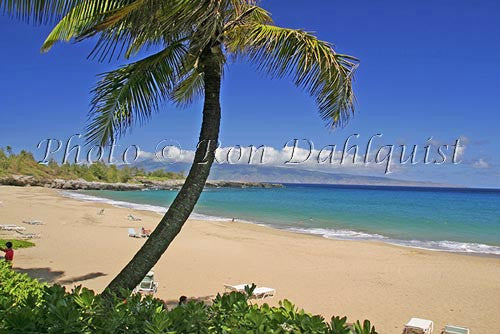 Fleming Beach, Kapalua, Maui, Hawaii Picture Photo