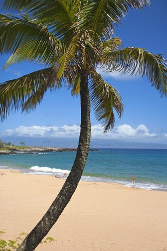 Fleming Beach, Kapalua, Maui, Hawaii Picture Stock Photo