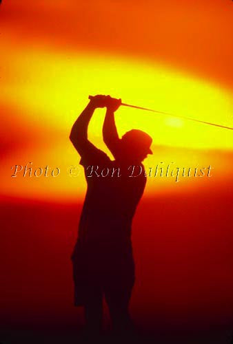 Silhouette of golfer at sunset, Hawaii Picture