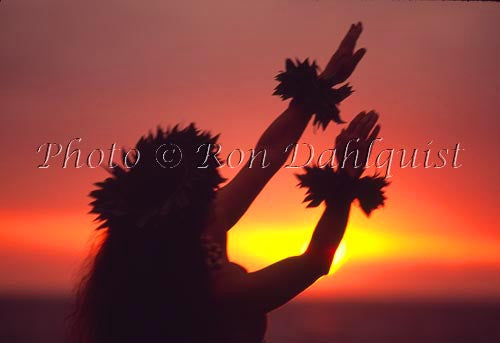 Silhouette of hula dancer at sunset. Maui, Hawaii Picture