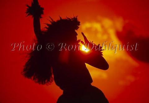 Silhouette of hula dancer at sunset. Maui, Hawaii - Hawaiipictures.com