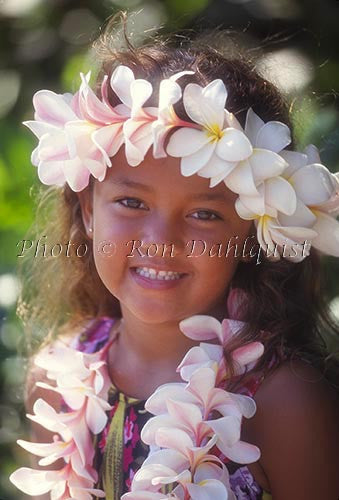 Keiki hula dancer, Maui, Hawaii Picture Photo Print Image