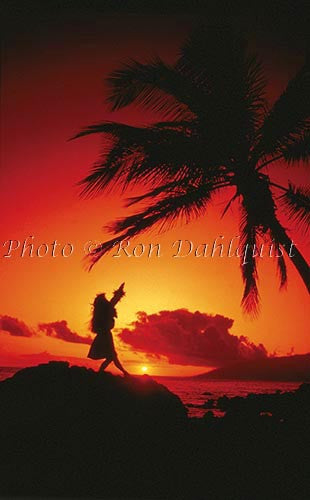 Silhouette of hula dancer, Maui, Hawaii Picture Photo