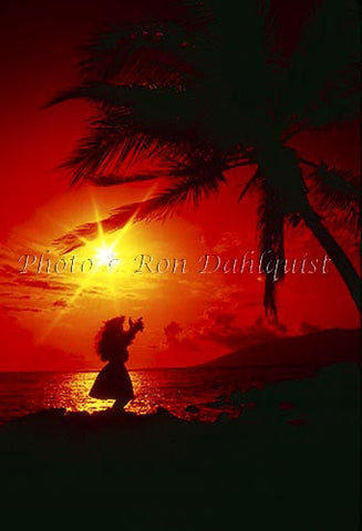 Silhouette of hula dancer, Maui, Hawaii Photo - Hawaiipictures.com