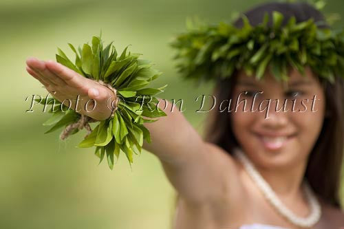 Keiki hula dancer, Maui, Hawaii Picture Stock Photo Print - Hawaiipictures.com