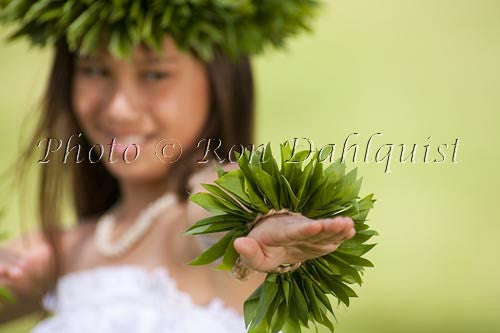 Keiki hula dancer, Maui, Hawaii Photo Stock Photo