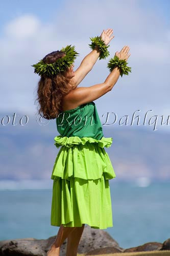 Hula Kahiko dancer, Maui, Hawaii MR Stock Photo Print