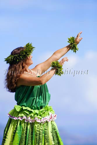 Hula Kahiko dancer, Maui, Hawaii MR Picture