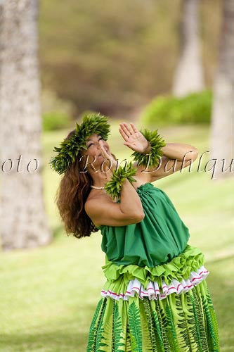 Hula Kahiko dancer, Maui, Hawaii Picture Photo
