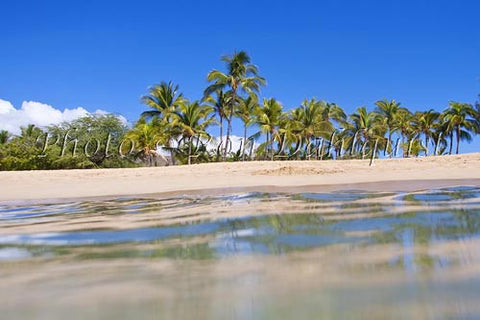 Palm trees, sand and ocean at Manele Bay and Hulopoe Beach, Lanai, Hawaii Picture