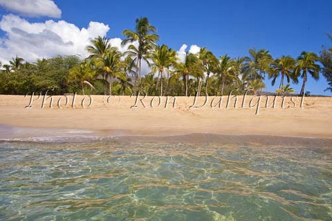 Palm trees, sand and ocean at Manele Bay and Hulopoe Beach, Lanai, Hawaii - Hawaiipictures.com