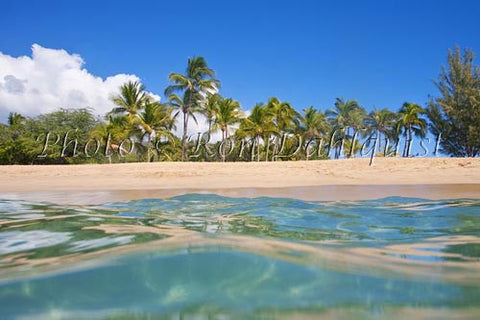 Palm trees, sand and ocean at Manele Bay and Hulopoe Beach, Lanai, Hawaii Photo