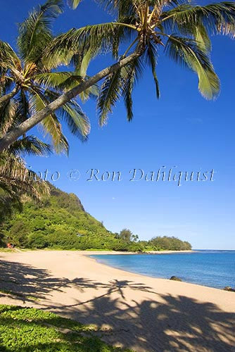 Haena Beach. Kauai, Hawaii Photo