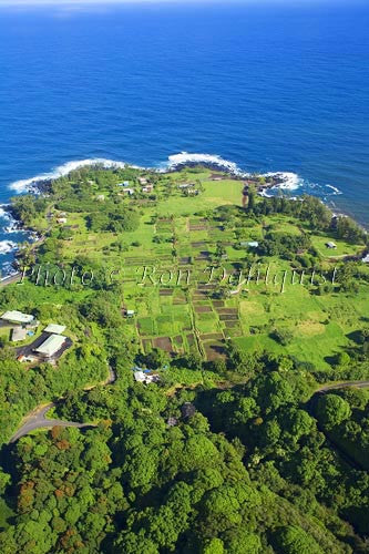 Keanae Peninsula along the road to Hana, Maui, Hawaii - Hawaiipictures.com