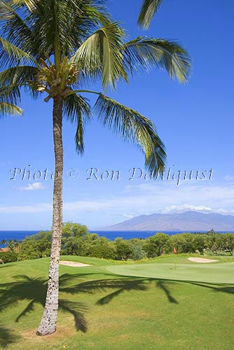 Wailea Gold Golf course, Maui, Hawaii Photo