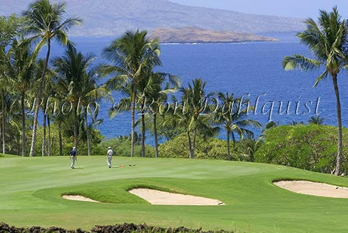 Golfers on Wailea Gold Golf Course, Maui, Hawaii Picture Photo