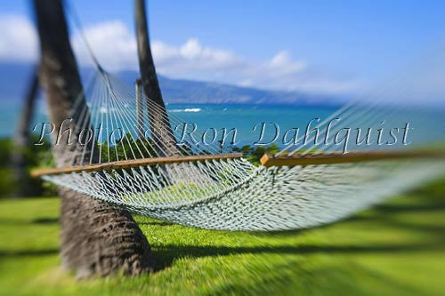 Hammock, Maui, Hawaii