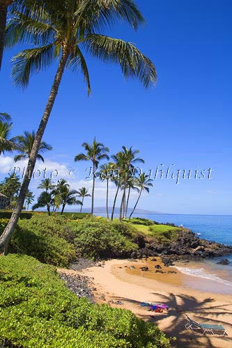 Ulua Beach, Wailea, Maui, Hawaii Picture Photo