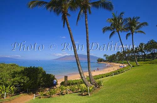 Ulua Beach, Wailea, Maui, Hawaii Picture Stock Photo - Hawaiipictures.com