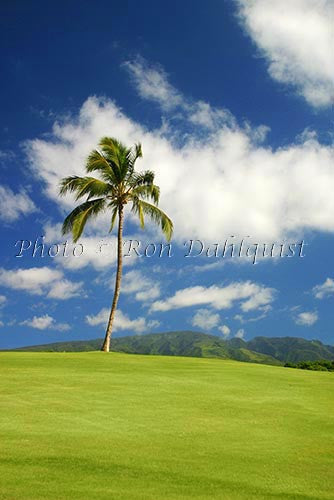 Kaanapali Golf Course, Maui, Hawaii Stock Photo