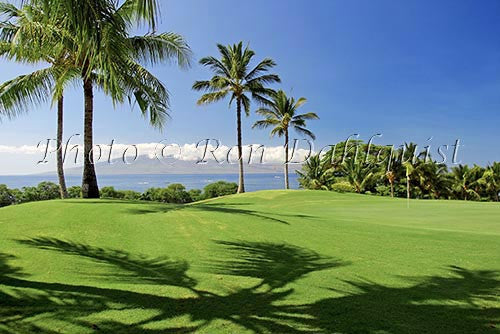 Kaanapali Golf Course, Maui, Hawaii Picture Photo