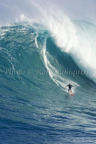 Surfer, Dave Kalama, on a big day at Peahi, also known as Jaws, Maui, Hawaii MNR Photo - Hawaiipictures.com