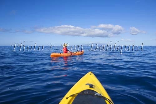Kayaking off the south shore of Maui, Hawaii Picture