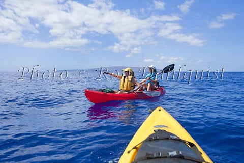 Kayakers (ages 55-65) whale watching in water off of Kihei, Maui, Hawaii